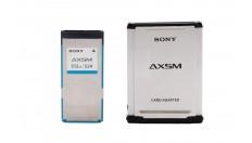Sony AXS-512S24 512 GB AXSM